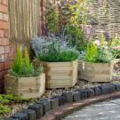 Hartwood Set of Three Hexagonal Planters