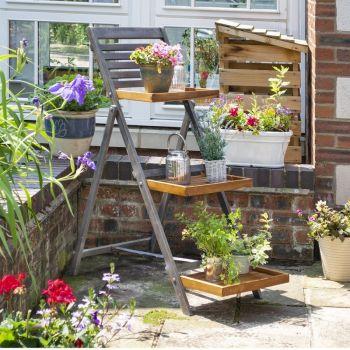 Rowlinson Alderley Plant Ladder - Large