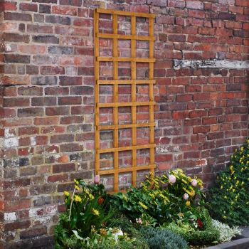 Hartwood 6' x 2' Heavy Duty Traditional Trellis