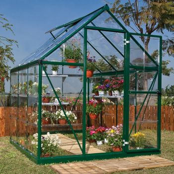Palram - Canopia 6' x 6' Harmony Green Polycarbonate Greenhouse