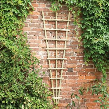 Hartwood Traditional Fan Trellis