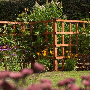 Rowlinson 6' x 3' Traditional Trellis Fence Panel