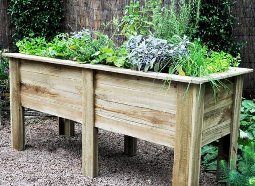 Christmas Present Ideas for Gardeners